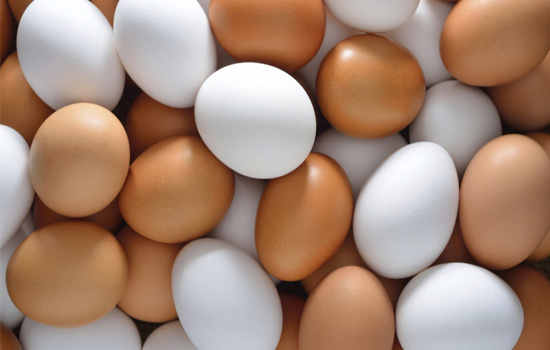 why the eggshell will become white?